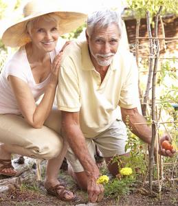 Здоровье в зрелом возрасте