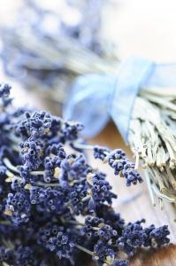 Лаванда используется в ароматерапии