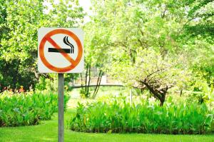Курение. Только вред